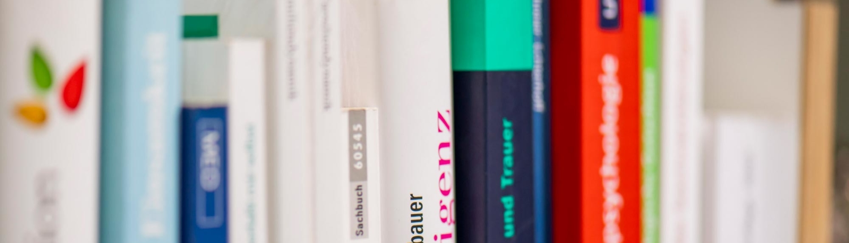 Witte Mediation, Fachbücher