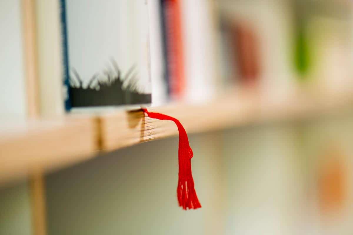 Witte Lehrbeauftragte, Buch mit rotem Faden