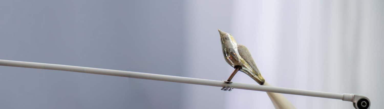 Witte Coaching, Vogel auf der Lampe